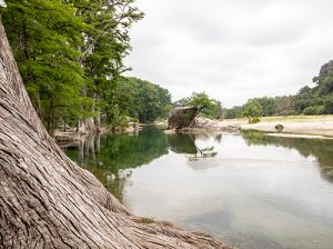 Neal's Lodges, Texas